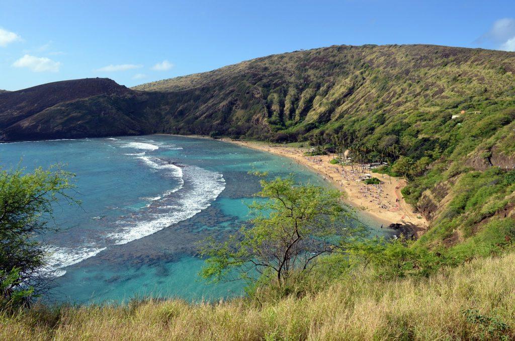 Plonger à Hawaï