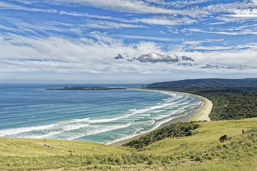 Plonger en Nouvelle-Zélande