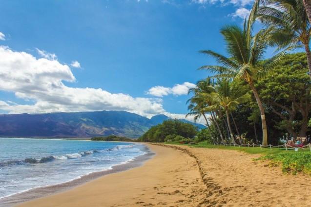 Plongée Hawaï