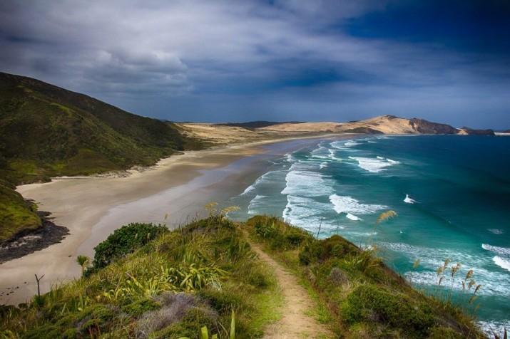 Plongée Nouvelle-Zélande